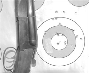 Shotgun Recoil