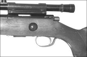 Marlin 80-DL and The Winchester