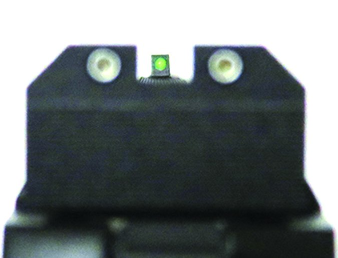 Dan Wesson Bruin Bronze 1881 10mm AUTO sight