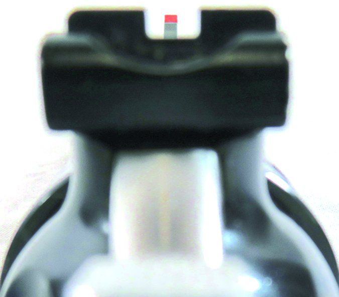 Ruger Security Six 357 Magnum sight