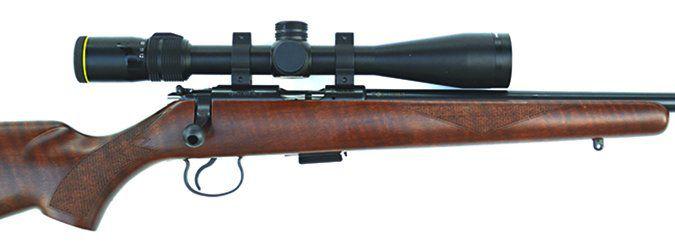 CZ-USA CZ 455 American scope