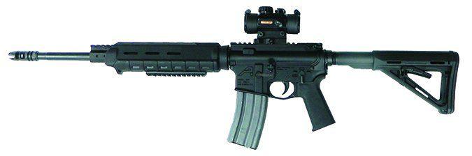 home-built AR-15 $600